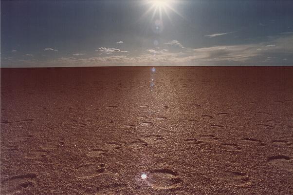 Sahara_13